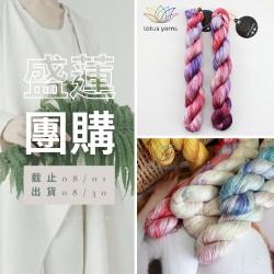「盛蓮團購」silk 22 手染真絲 50g×5